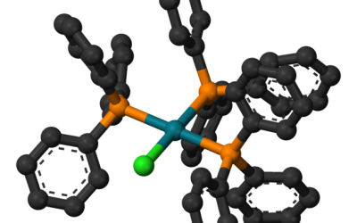 Chiropractic catalyst