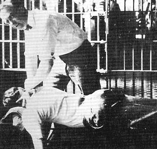 Jailed Chiropractors