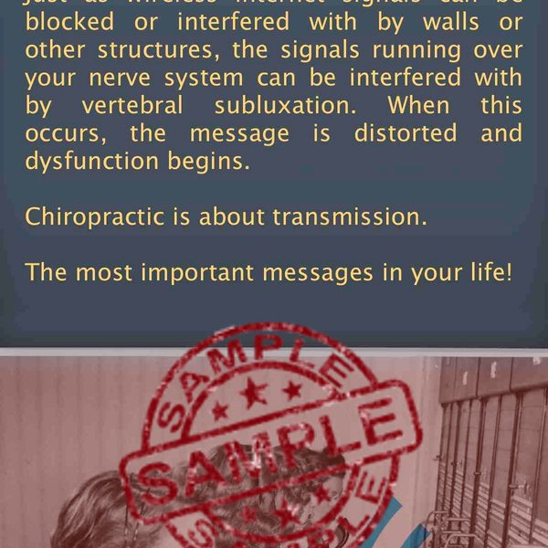 chiropractic is about transmission brochure Back Sample