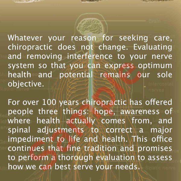 chiropractic is brochure Back Sample