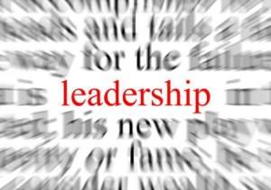 Chiropractic leadership
