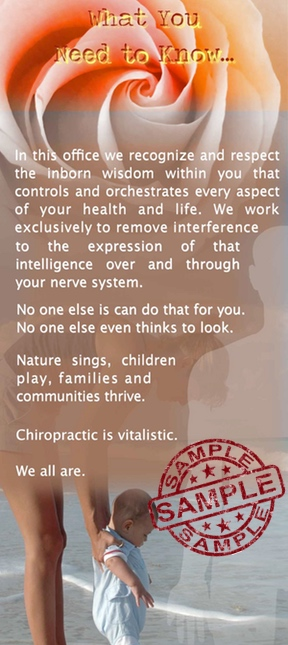 Vitalistic Chiropractic Brochure Back Sample