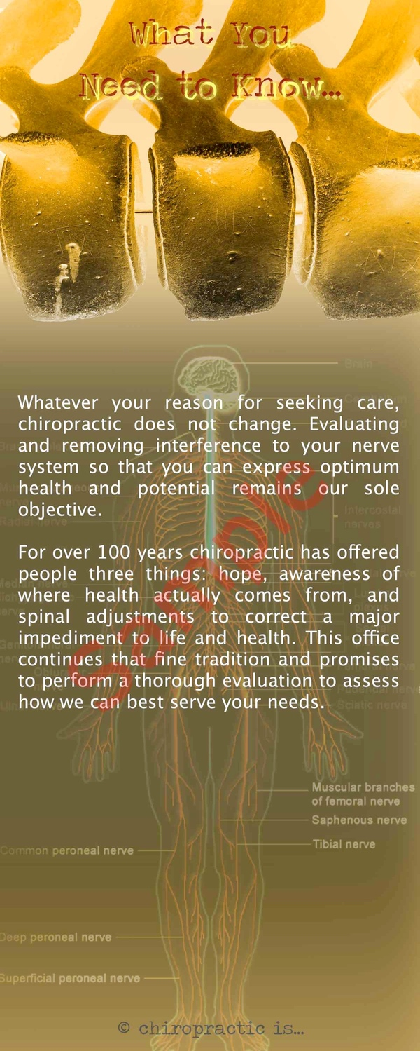 chiropractic is brochure Back Sample