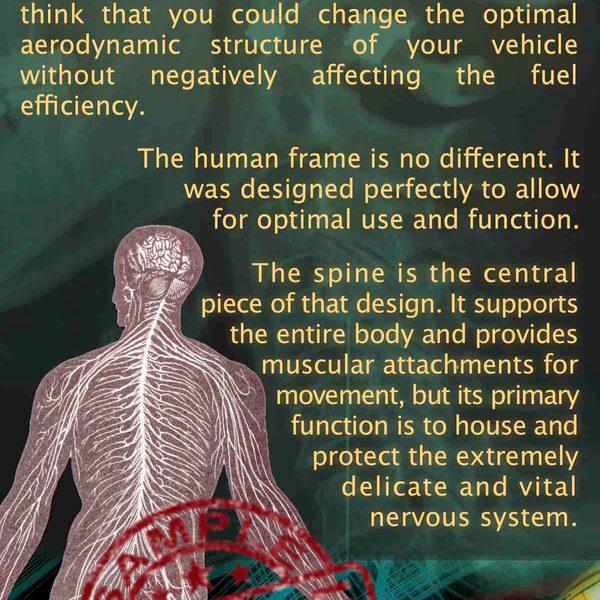 chiropractic is... brochure Scientific Front Sample